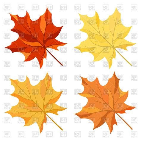 free clipart vector autumn maple leaves royalty free vector clip image