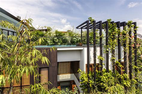 Garden Trellis Images Gallery Of Merryn Road 40 170 Aamer Architects 13