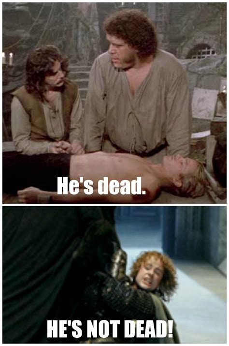 lotr princess bride meme princess bride pinterest