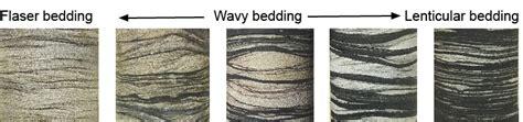 lenticular bedding coal kentucky geological survey university of kentucky