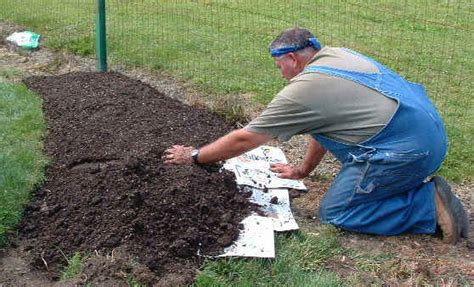 how to prepare a flower bed preparing quot weed free quot raised planting beds