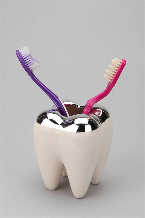 tooth holders tooth toothbrush holder outfitters