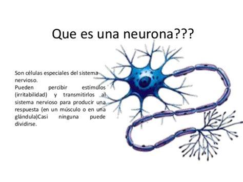 que son imagenes jpg y pdf informaci 243 n de las neuronas mapas conceptuales e im 225 genes