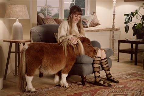 Amazon Commercial Actress With Horse | amazon prime s little horse is cutest christmas advert of