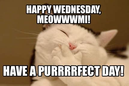 Happy Wednesday Meme - happy wednesday meme related keywords suggestions