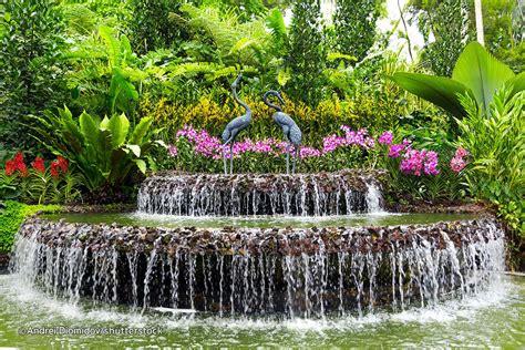 Singapore Botanic Garden юго восточная и южная азия Botanical Garden Singapore