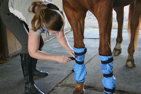 leg wraps equine leg wraps 2 per package equi cool