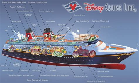 disney dream floor plan carnival dream stateroom floor plans