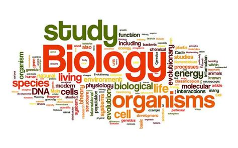 biological themes in film class worried about class 12 boards let s plan biology revision