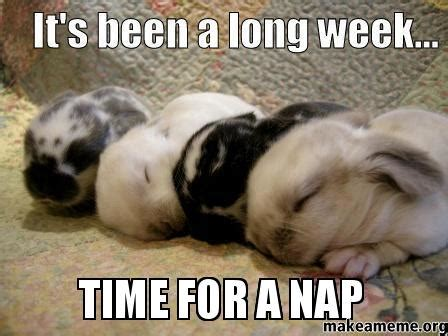 Nap Meme - time for a nap make a meme