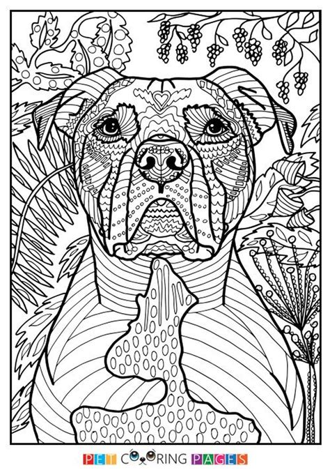 coloring pages for adults summer get this summer coloring pages to print out for adults