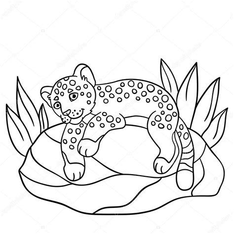 imagenes de jaguar para descargar dibujos para colorear jaguar de lindo beb 233 poco en la