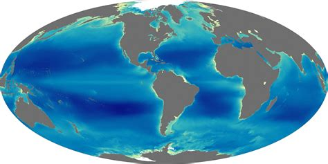 earth s oceans triple feature the living sea wild ocean coral reef adventure dvd movie nines years of ocean chlorophyll image of the day