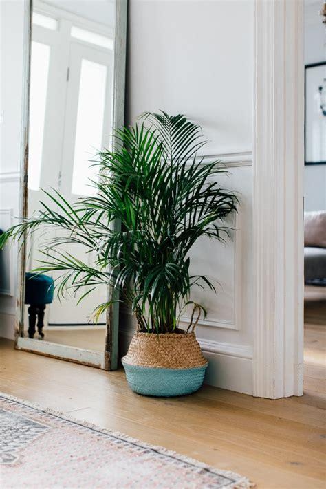 decoracion con espejos y plantas 1001 ideas para decorar las recibidores peque 241 os