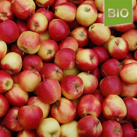 äpfel Alte Sorten 2951 by Bio 196 Pfel Der Sorte Gala 5kg Der Herzapfelhof Im Alten Land