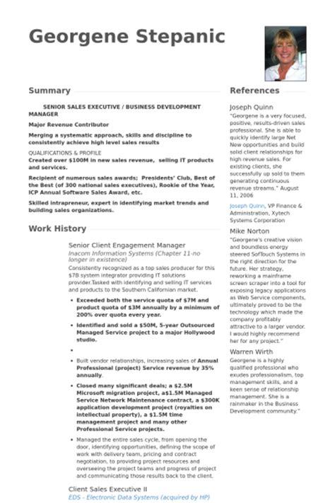 Client Engagement Manager Sle Resume engagement manager exemple de cv base de donn 233 es des cv de visualcv
