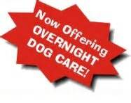 dog house boise the dog house dog day care dog training dog bakery dog food and toys idaho