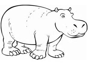 hippo coloring page az coloring pages