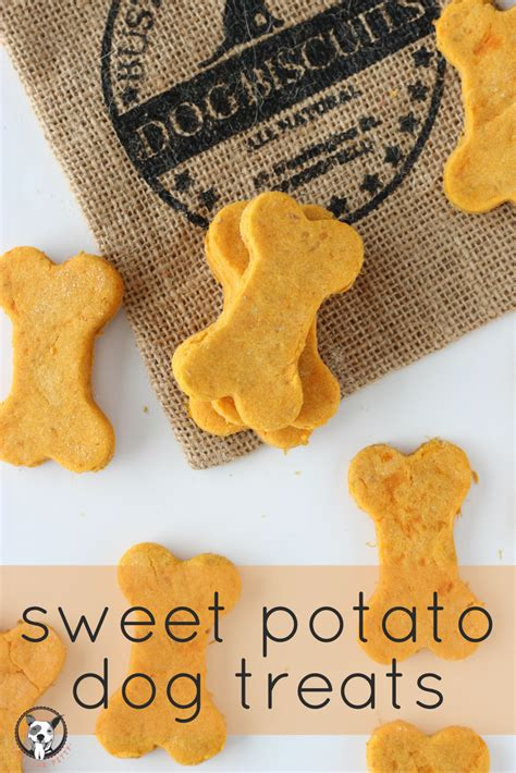 sweet potato and dogs sweet potato treats lola the pitty