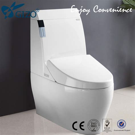 Toto Toilets Bidet Be Similar To Japanese Automatic Toilet Toto Water Closet
