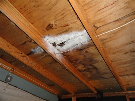 should i buy a house with mold buying a house with mold in attic 28 images mold ermi roof sheathing from attic
