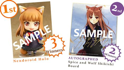 wolf parchment new theory spice wolf vol 1 light novel books wolf parchment new theory spice wolf debut cp book