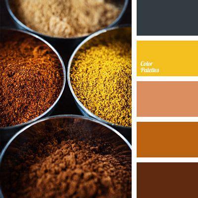 orange spice color almost black colour bright yellow colour of cinnamon