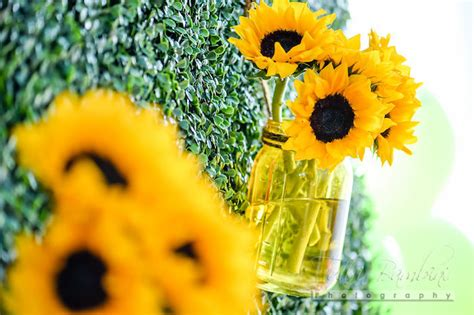 Sunflower Garden Ideas Sunflower Garden Ideas Oliver And Rust Sunflowers Beautiful Way To Keep Them Upright And