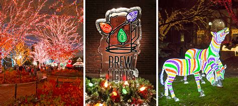 brew lights at zoo lights brewlights at lincoln park zoo december 1 2016 chicago