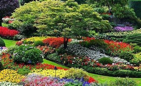 realizzare un giardino fai da te realizzare un giardino giardino fai da te