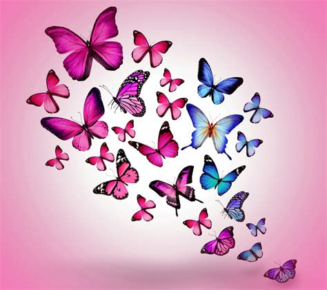 pink wallpaper zedge you told me once that a soul isn t something a person is