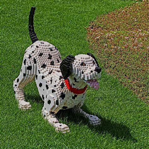 lego dogs 5309507850 a164f0098c z jpg