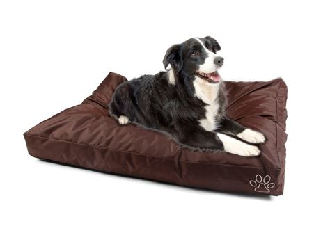 cheap dog sofas popular dog beds big dogs buy cheap dog beds big dogs lots
