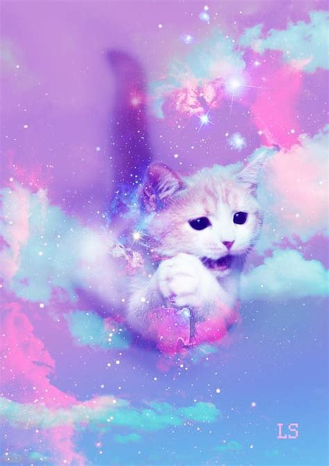 wallpaper galaxy cat galaxy cat wallpaper iphone wallpapers pinterest