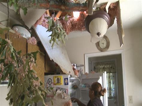 tree fell on house house plan 2017