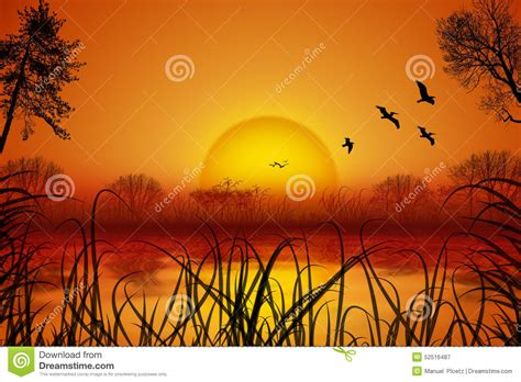 romantic summer landscape  sunset  water birds