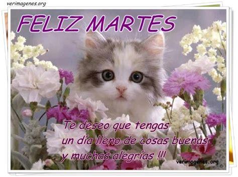 imagenes de feliz martes para mis amigos feliz martes amigos un feliz dia mundo esot 233 rico