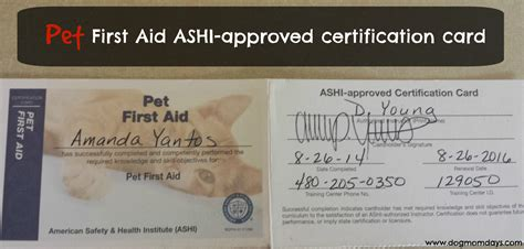 ashi cpr card template national pet aid awareness month becoming certified