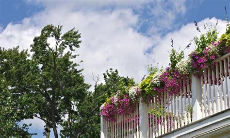 idee per terrazzi fioriti stunning balconi e terrazzi fioriti photos idee