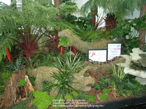 Pacific Northwest Flower And Garden Show Pacific Northwest Gardening Forum Pnw Flower And Garden Show Garden Org