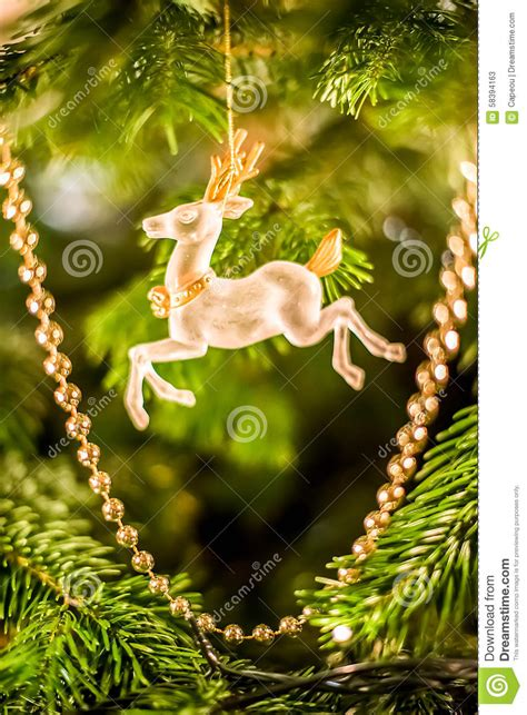 chrsitmas reindeer stock photo image 58394163