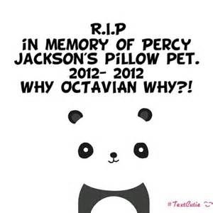 rest in peace percy s panda pillow pet percy jackson