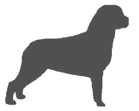 rottweiler silhouette rottweiler silhouette clip cliparts co