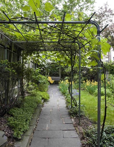 Cheap Trellis landscape traditional with outdoor living space contemporary standard height