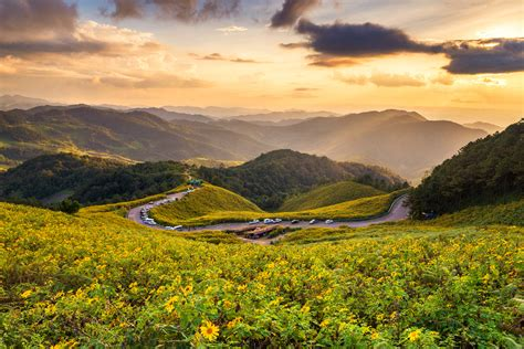 postcard perfect  exciting     beautiful pai