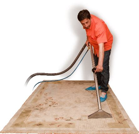 carpet express vs rug doctor rug carpet cleaners rugs ideas