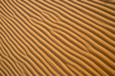 pattern images in photography nature s pattern photography 35 outstanding photos noupe