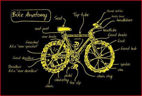 the anatomy of a mountain bike cool biking zone bike 101 anatomy of a bike simply bike