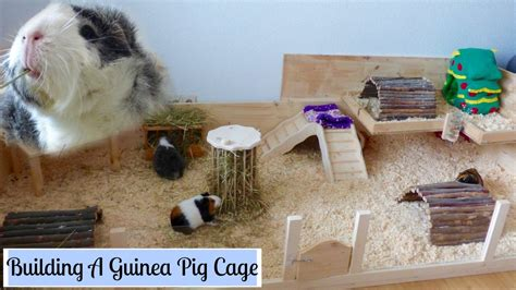 can you house train a pig can you house a pig 28 images cosy the family pets settle for a snooze on the bed
