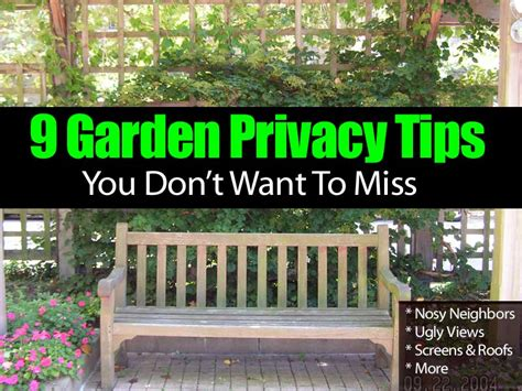 Diy Patio Lighting 9 Garden Privacy Tips You Don T Want To Miss